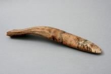 Insygnium z poroża łosia wydobyte z kredy jeziornej w okolicach Rusinowa (powiat świdwiński) przewiezionej do pobliskich Powalic, schyłek starszej epoki kamienia, 40,5 cm, fot. G. Solecki