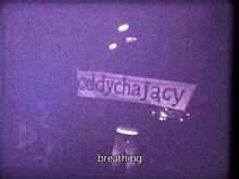 Akademia Ruchu, Europa, 1976, dokumentacja filmowa akcji ulicznej, 3' 37'' Zakup dofinansowany ze środków Województwa Zachodniopomorskiego