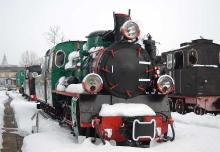 """Parowóz wąskotorowy Px48-3915, rok produkcji 1953, Fabryka Lokomotyw im. Feliksa Dzierżyńskiego w Chrzanowie (początkowy rozstaw osi 750 mm) dla Kujawskiej Kolei Wąskotorowej. W 1974 roku przebudowany na tor 1000 mm i eksploatowany do 1986 roku na sieci Pomorskich Kolei Dojazdowych. W latach 90. prowadził pociągi turystyczne """"Ciuchcia-Retro-Ekspres"""" na trasie Gryfice–Rewal–Trzebiatów (Pogorzelica)"""